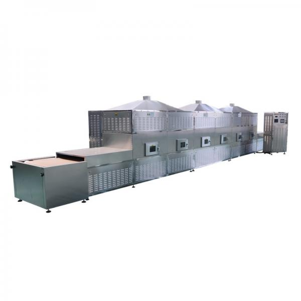 Automatic Continuous Microwave Drying Machine , Industrial Food Dryer