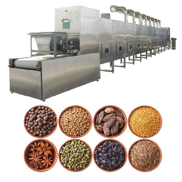 Industrial Belt Food Dehydrator Machine, meat microwave drying machine