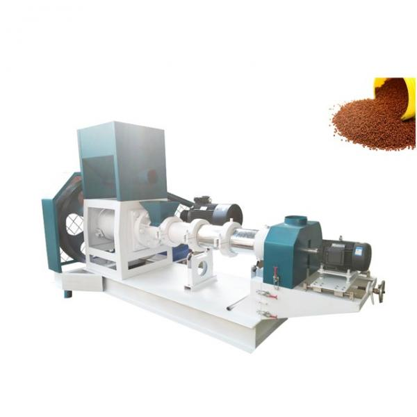 New Design China Manufacturer Pet Food Twin Screw Extruder