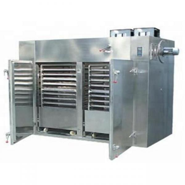 Automatic Working Hot Air Circulation Microwave Drying Equipment Carton Dryer