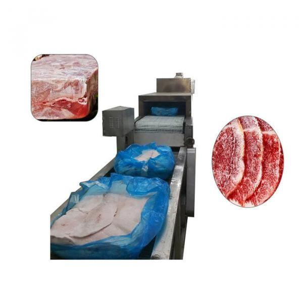 Food Processing Machinery Thawing Defrosting Machine for Meat Processing